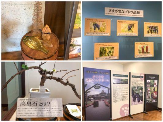 ブドウの品種や高畠石の説明