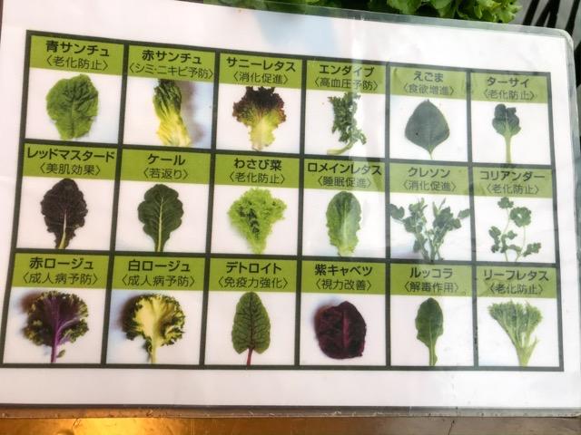 18種類の野菜