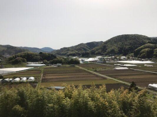 長谷堂城跡(城山)