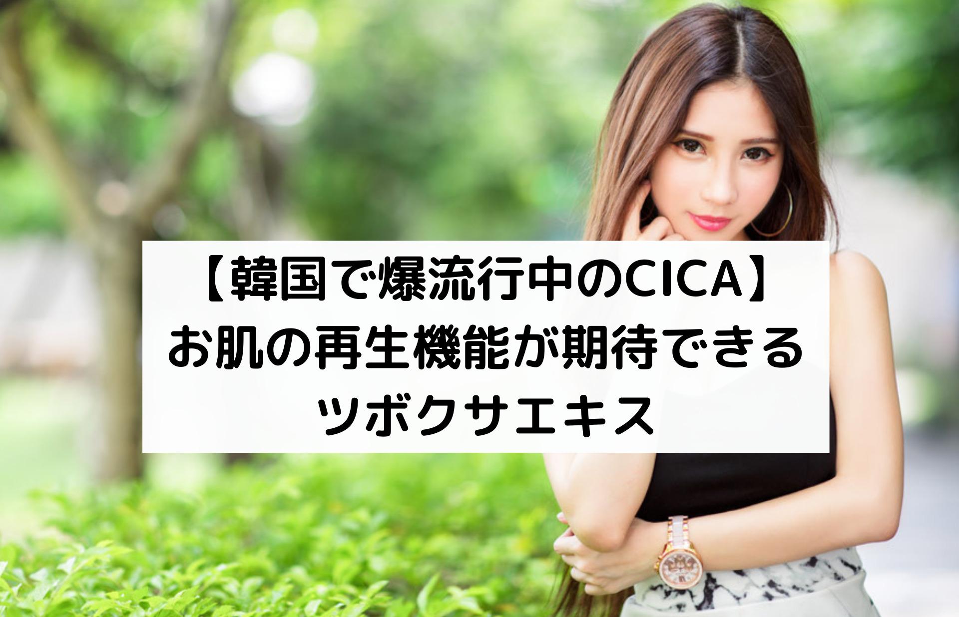 【韓国で爆流行中のCICA】お肌の再生機能が期待できるツボクサエキス